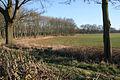 Farmland off Hall Road - geograph.org.uk - 703065.jpg