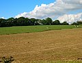 Field of Stubble near Woods Hill - geograph.org.uk - 246406.jpg