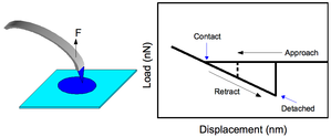 Chemical force microscopy - Image: Figure 2new