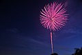 Fireworks at blue moment - panoramio.jpg
