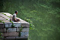 Fisherman in Summer Palace, Beijing.jpg