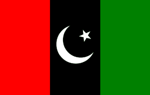 Central Executive Committee of the Pakistan Peoples Party - Image: Flag of Pakistan Peoples Party