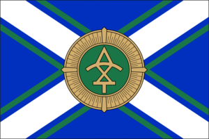 Georgia Coast Guard flag