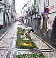 Flower carpet (4616133495).jpg