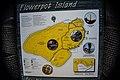 Flowerpot Map - panoramio.jpg