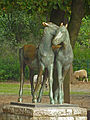 Fohlengruppe, Tierpark Berlin, 502-608.jpg