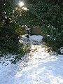 Footpath - Parkway - geograph.org.uk - 1152141.jpg