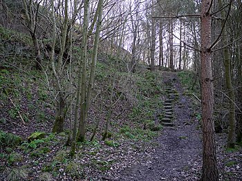 English: Footpath along the east side of Whitt...
