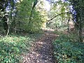Footpath at Moss Valley Country Park - geograph.org.uk - 1037638.jpg