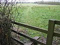 Footpath near Cane End - geograph.org.uk - 349296.jpg
