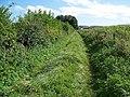 Footpath near Knook - geograph.org.uk - 1479525.jpg