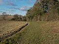 Footpath past Bushy Grove - geograph.org.uk - 1055848.jpg