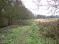 Footpath west of Whitlingham Lane - geograph.org.uk - 1671099.jpg