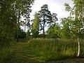 Fornborg near Tjelvars grav on Gotland.jpg