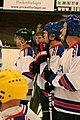Four-Nation Hockey Tournament 6 (4397138467).jpg