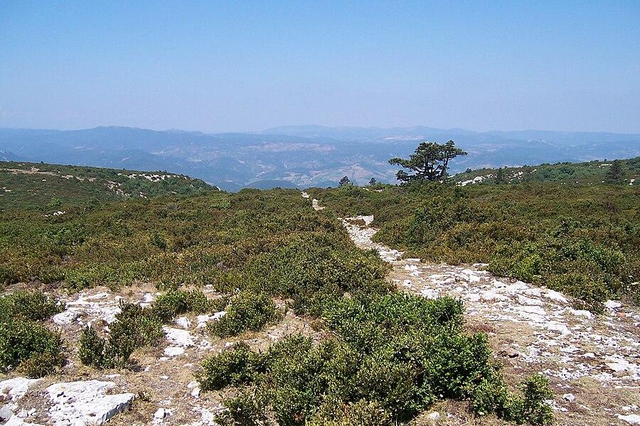 France - Aude - Tuchan - Montagne de Tauch