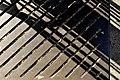 Frankfurt, alcorque y sombras 2.jpg