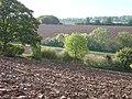 Fresh tilth - geograph.org.uk - 1013599.jpg