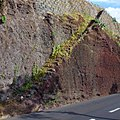 Funchal, Madeira - 2013-01-08 - 85878848.jpg