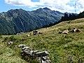 Furggu-Pass Blick nach Süden.jpg