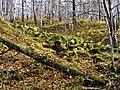 G. Miass, Chelyabinskaya oblast', Russia - panoramio (89).jpg