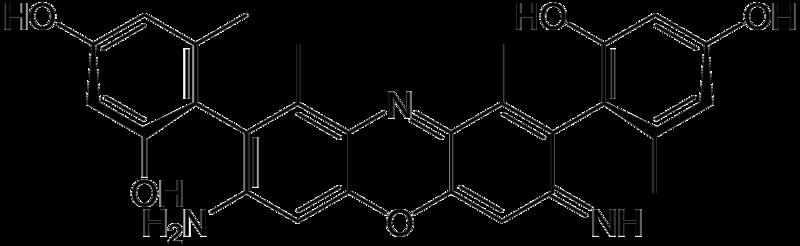 File:Gamma-aminoorceinimine.png