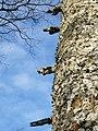 Gargoyles at southwestside corner Eben-Ezer.jpg