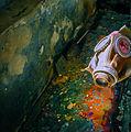 Gas mask, 2009.07.17.jpg