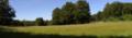 Gemuenden Ehringshausen Feldatal Meadow Cervus elaphus a.png