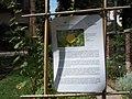 Giardino botanico di Brera (Milan) 306.jpg