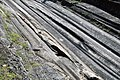 Glacial Grooves State Park, Kelleys Island OH.jpg