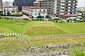 Goshiki-zuka Kofun, mound-east.jpg