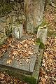 Gravestones at Jewish Cemetery in Dřevíkov, Chrudim District 71.JPG