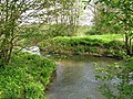 Great Stour near to Hothfield.jpg