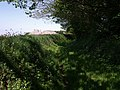 Green lane to Tor View - geograph.org.uk - 429424.jpg