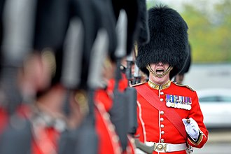 Grenadier - The British Army's Grenadier Guards continues to wear bearskins with its full dress uniform.