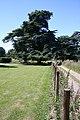 Grounds of Bradfield Hall - geograph.org.uk - 1379688.jpg
