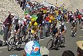 Groupe maillot jaune - Ventoux 2009.JPG