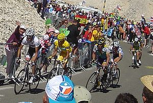 List of teams and cyclists in the 2009 Tour de France - Wikipedia 60dcee387