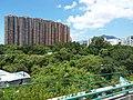 HK Bus 962 view 屯門公路 Tuen Mun Road 青山灣段 Castle Peak August 2018 SSG 02.jpg