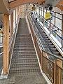 HK Central-Midlevels SOHO escalators view Robinson Road November 2020 SS2 02.jpg