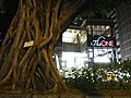HK TST night Nathan Road Banyan tree view The One Sept-2012.JPG