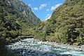 Haast River valley near Thunder Creek Falls.jpg