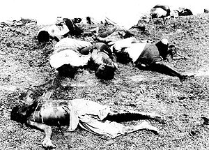 Parsley massacre - Haitians murdered in the parsley massacre
