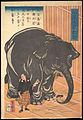 Hakurai taizo no zu-View of the Large Imported Elephant MET DP143091.jpg
