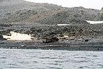 Half Moon Island, Antarctica. (24313656613).jpg