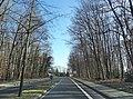 Hamm, Germany - panoramio (5331).jpg