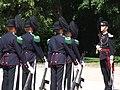 Hans Majestet Kongens Garde1.JPG