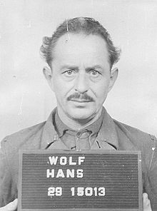 Hans Wolf Net Worth