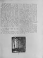 Harz-Berg-Kalender 1920 034.png